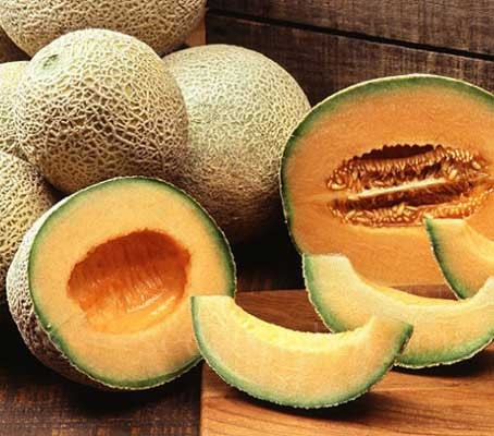 Melon Cantaloupe di Charentais