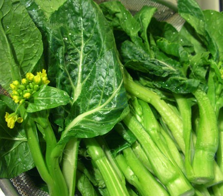 Choy Sum 'Gunsho' is a vigorous and productive 80 day type.