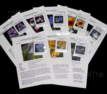 The Easy Bee Collection - Eight packs of seeds of flowers to give Bees a Boost