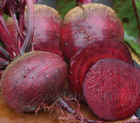 Egyptian Beetroot produces smooth skinned roots, often heart-shaped, with a deep red, tender and flavoursome flesh.