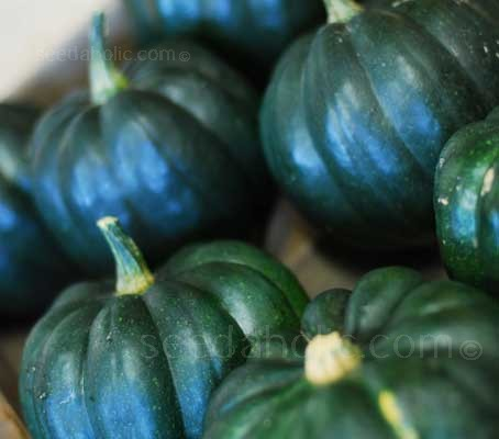 "Winter Squash ""Table Ace"" is one of the sweetest varieties currently available."