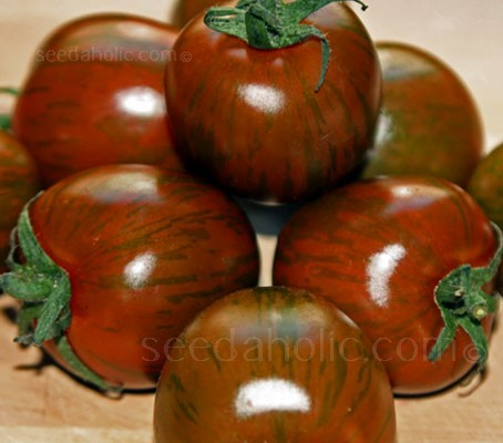 Black Zebra has exceptionally rich, complex, delightful tomato flavours with complexity associated with the best of black tomatoes.