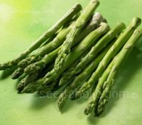 Asparagus Connover's Colossal is a traditional cultivar with good yields from selected crowns.