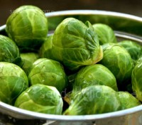 Brussel Sprouts 'Evesham Special' is a real old favourite for its generous crops which are ready particularly early in the season