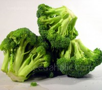 Broccoli Calabrese 'Waltham' was launched in 1950. It has been a favorite ever since. Organic Seeds