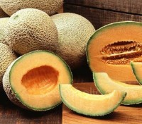 To simply classify a Charentais melon as a gourmet French Cantaloupe does not do nearly enough to describe them.