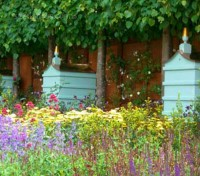 A carefully chosen range of flowers that are rich in both nectar and pollen that both bees and butterflies adore.