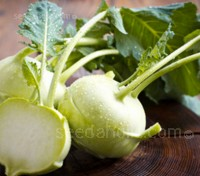 Kohl Rabi 'Logo' can be harvested when small, for use as a baby vegetable or grated on salads. The leaves are also edible.