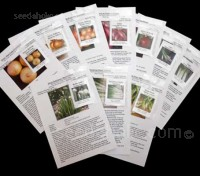 The Onion Collection, containing ten packets of seeds.