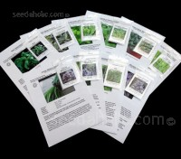 The Baby Leaf Salad Mix Collection - Eight Packs of Seeds