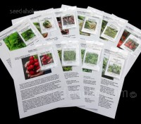 The Organic Salad Collection - Ten Packs of tasty and organic salad essentials.