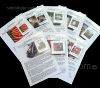 The Root Vegetable Collection contains eight packets of seeds. They are one of the delights of the autumn season