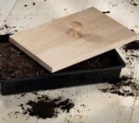 The Nether Wallop Tray Tamper is designed to firm compost ready for propagation with one easy 'tamp'.