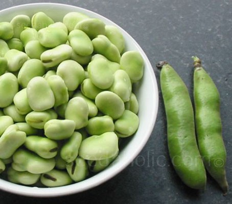 Broad Bean The Sutton has a bushy dwarf plant habit, ideal for small gardens and very useful exposed locations.
