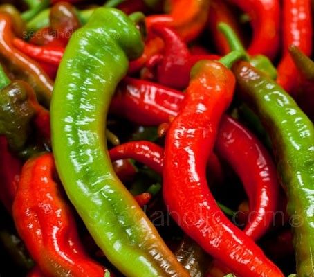 Dependable and delicious, 'Jimmy Nardello' is a highly prized heirloom pepper used in Italian cooking.