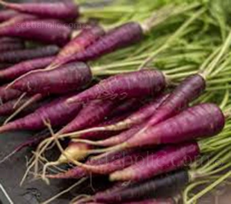 Purple Dragon has quickly established itself as a carrot variety that is going to continue to be very popular in years to come.