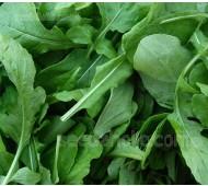 Rocket, Salad Rocket 'Green Brigade'