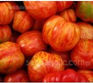 Tomato 'Tigerella', Organic
